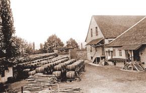 Wine maturing under the sun, registration department, Yelenendorf.
