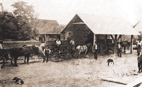 Weighing grapes, Grunfeld registration department. 1920s