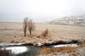 Floating island seeks the snow-flecked shore