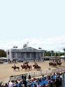 The Karabakh Horse Resurgent