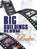 Big Buildings Bloom in Baku