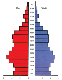 Population structure by age and sex in the Azerbaijan Republic at 1 January 2011. Source: Demographic Indicators of Azerbaijan. Baku, 2011