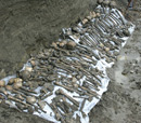 Mass Grave Found in Northern Azerbaijan