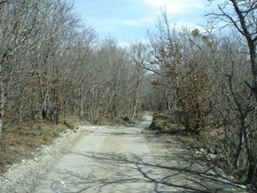 Road going to Absheron National Park