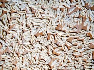 Surhullu: The Taste of Saribash