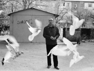The Hidden World of Baku's Pigeon Fanciers