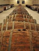 Santé – to the Future of Azerbaijan's Vineyards