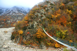 Up in the mountains autumn was more advanced. This is the footbridge