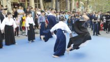 Aikido in action